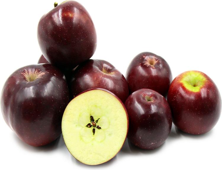 사과 알칸사스블랙 / m26자근묘 접목1년